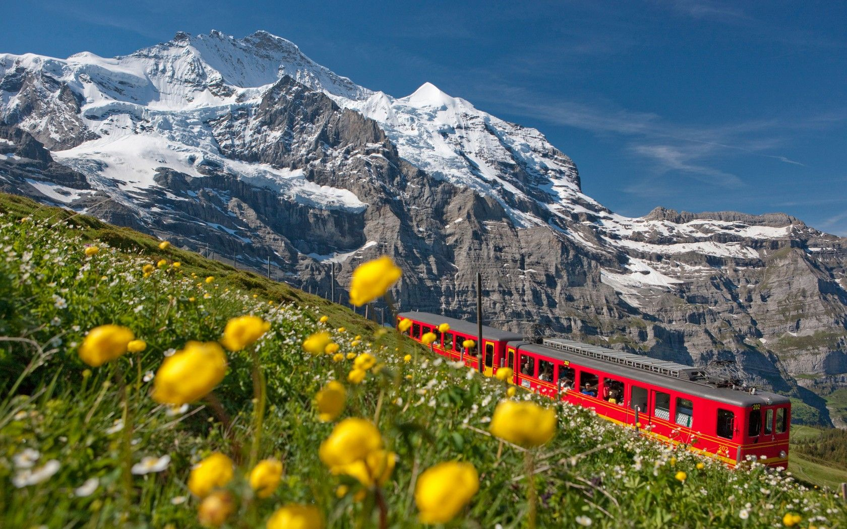 Train in the Swiss Mountains